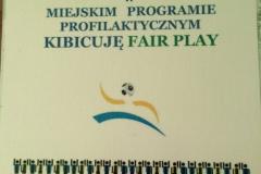 fair-play-2011.JPG