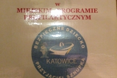 program-profilaktyczny-2013.JPG