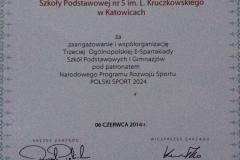 spartakiada-2014.JPG