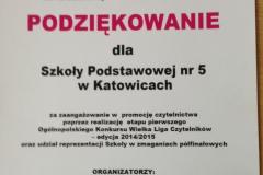 wielka-liga2014-2015.JPG